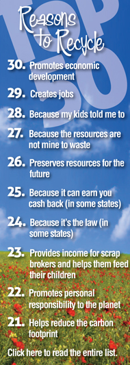 TOP 50 Reasons to Recicle